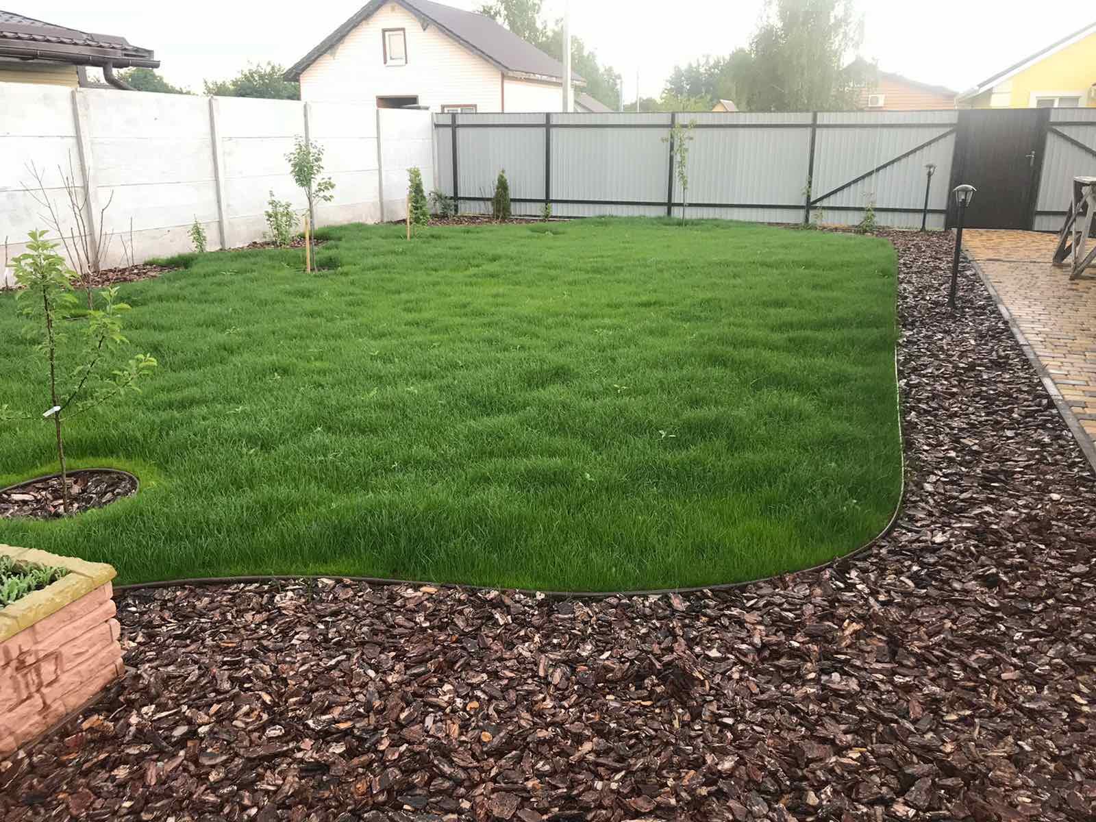 Як посіяти газон