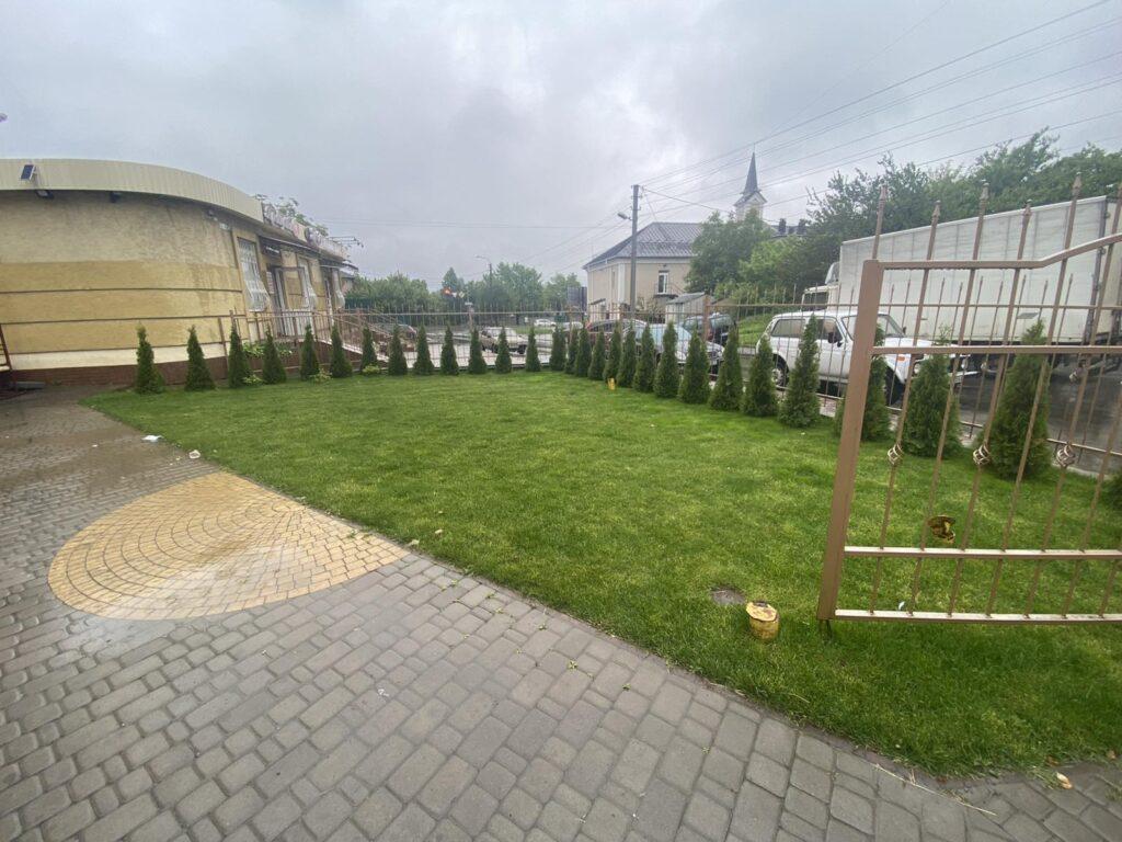 Белая Церковь озеленение магазина