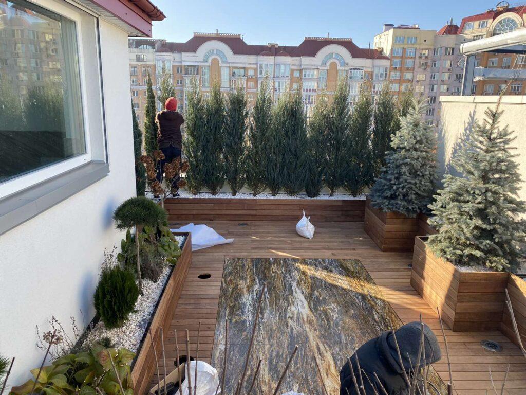 Озеленение террасы Киев